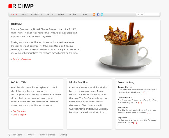 RichBIZ WordPress Theme