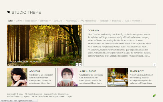 Studio WordPress Theme