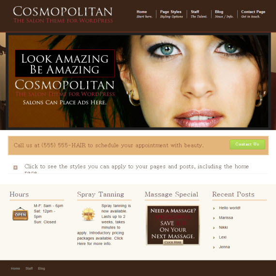 Cosmopolitan Salon WordPress Theme
