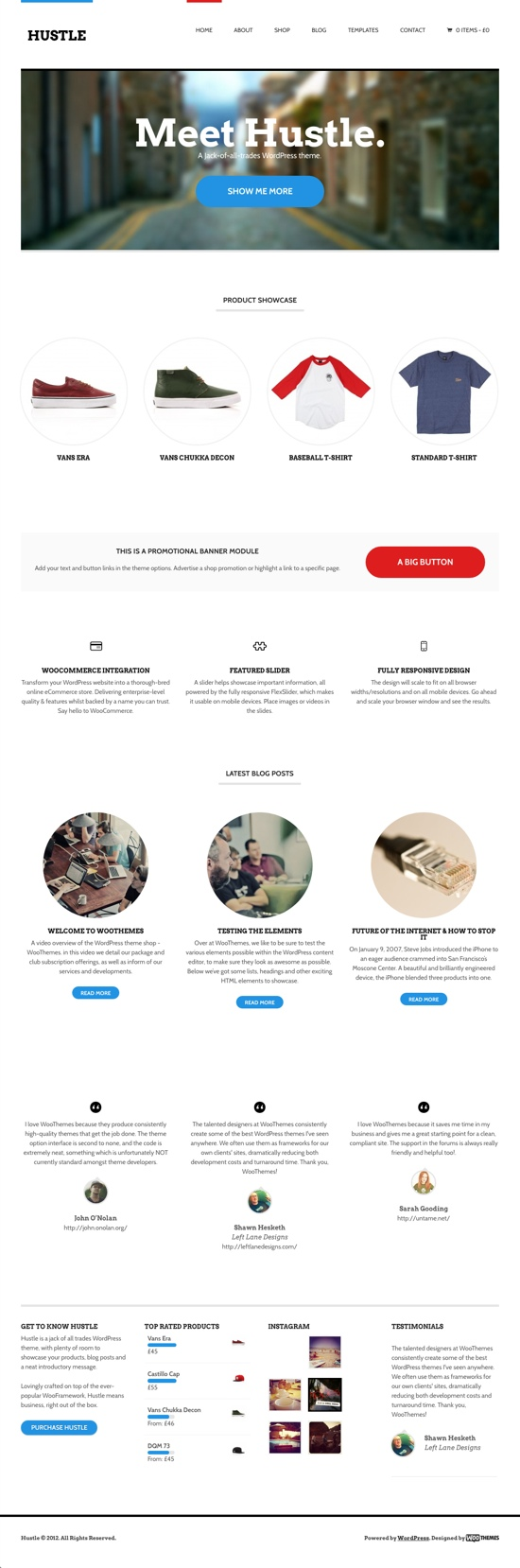 Hustle WordPress Theme